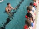 Schwimmen 2010_3